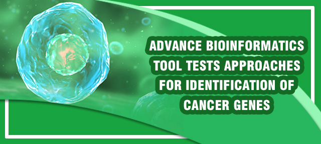 Advance bioinformatics tool tests approaches for identification of cancer genes
